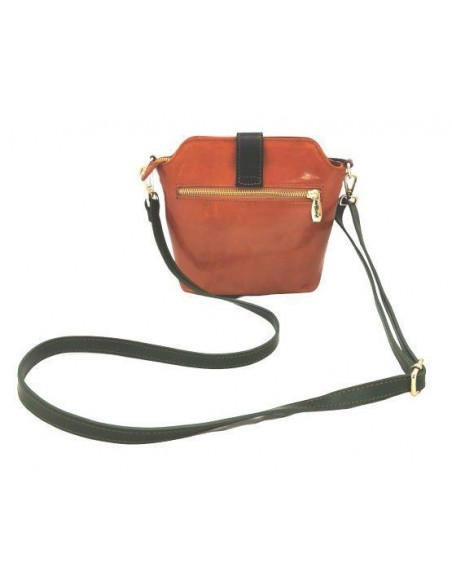 Multicolour Valentina small crossbody bag with buckle (4274)