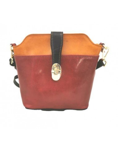 Multicolour Valentina small crossbody bag with buckle (4274)
